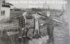 Photo courtesy of the Sturgeon Guard Program