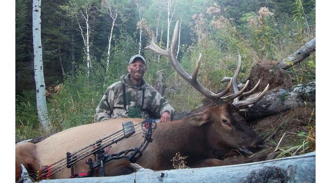 Success – 2013 Elk hunt