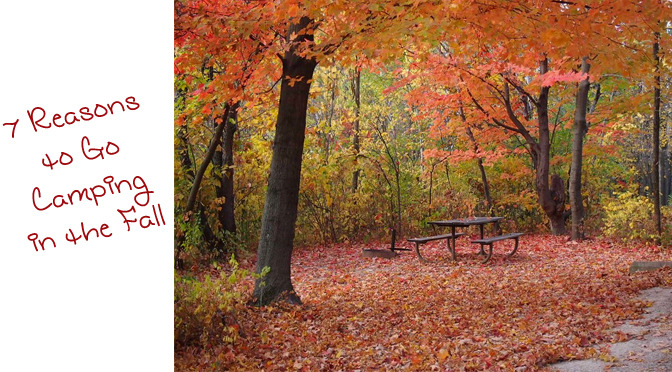 7 Reasons I Love Camping In the Fall