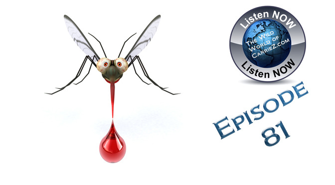 #HuntFishTravel 081 – Mosquito Repellents and the Hunter