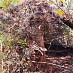 Net blinds like this one are a creative and effective solution for hunting on the ground.
