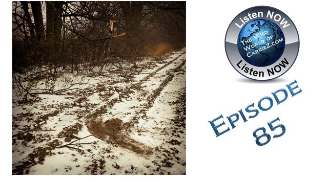 #HuntFishTravel 085 – Deer Scents, Lures & How to Make a Mock Scrape