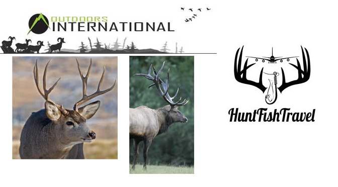 Elk Hunting and Mule Deer Hunting in Arizona