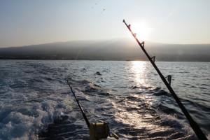 Fishing in Hawaii with Bite Me Sportfishing. Plus a bonus video! #Hawaii #Fishing