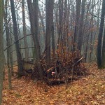 Reviving the Lost Art of the Brush Blind 1