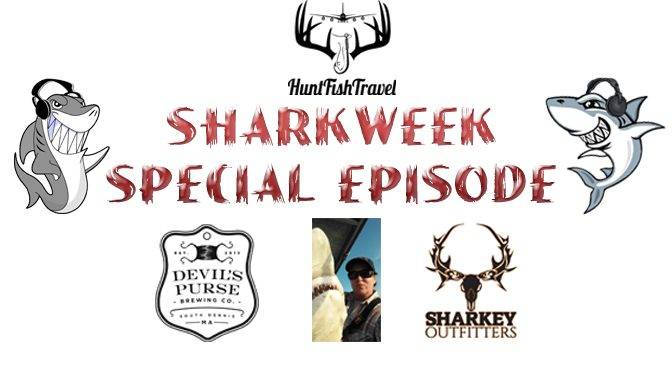 #SharkWeek 2016 – Cape Cod Breweries, Shark Fishing & Shark Podcasts