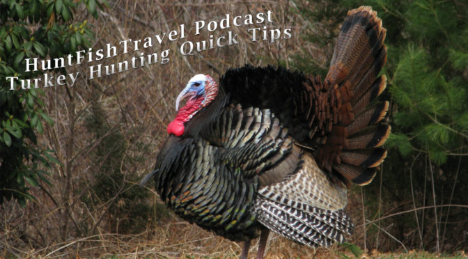 HuntFishTravel Podcast 1-5 Minute Quick Turkey Hunting Tips